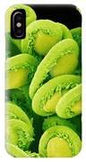 Orchic Cactus Ovules, Sem IPhone Case