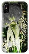 Orchids Abound IPhone Case