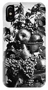 Oregon: Wine & Grapes IPhone Case