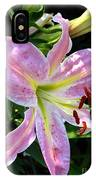 Oriental Lily Named Tom Pouce IPhone Case