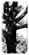 Ornamental Dead Tree By The Path IPhone Case