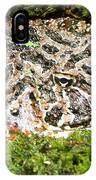 Ornate Horned Frog IPhone Case