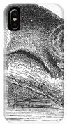 Otter, 1873 IPhone Case