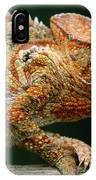 Oustalets Chameleon Furcifer Oustaleti IPhone Case