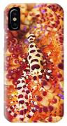 Pair Of Coleman Shrimp On A Red IPhone Case