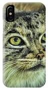 Pallas Cat IPhone Case