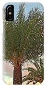 Palm On The Avenida IPhone Case