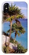 Palm Trees At Tulum IPhone Case