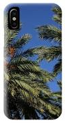 Palms 9838b IPhone Case