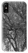 Palo Verde Tree 2 IPhone Case