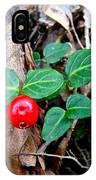 Partridge Berry Berry - Mitchella Repens IPhone Case