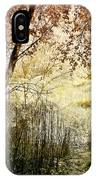 Path To The Meadow IPhone Case