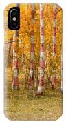 Patriotic Autumn IPhone Case