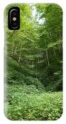 Peaceful Forest IPhone Case
