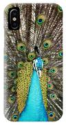 Peacock Plumage Feathers IPhone Case