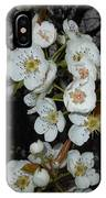 Pear Blooms And Tree IPhone Case