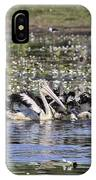 Pelicans At Knuckey Lagoon IPhone Case