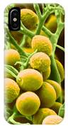 Peronospora Parasitica IPhone Case