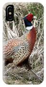 Pheasant Walking IPhone Case