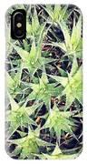 Philadelphia Flower Show IPhone Case