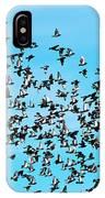Pigeon Flight IPhone Case