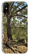 Pine Tree And Rocks IPhone Case