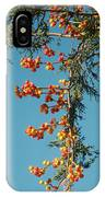Pine Tree With Berries IPhone Case
