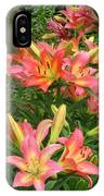 Pink And Yellow Daylilies IPhone Case