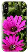 Pink Daisy's IPhone Case