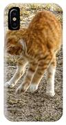 Playful Yellow Kitty IPhone Case