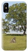 Pleasant Hillside IPhone Case