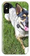 Please Play Fetch IPhone Case