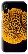 Pollen Grain Of The Passion Flower IPhone Case