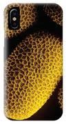 Pollen Of Marsh Woundwort Flower IPhone Case