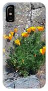 Poppy On The Rocks IPhone Case