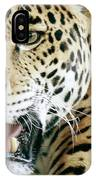 Portrait Of A Captive Jaguar Panthera IPhone Case