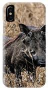 Portrait Of A Warthog IPhone Case
