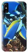 Powderblue Surgeonfish IPhone Case