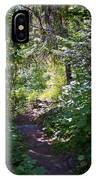 Priest Lake Trail Series IIi - Trail Shadows IPhone Case