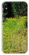 Priest Lake Trail Series Iv - Small Meadow IPhone Case