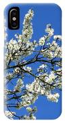Promise Of Summer IPhone Case