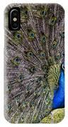 Proud Peacock At Leeds Castle IPhone Case