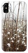Puffed Wheat IPhone Case