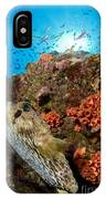 Pufferfish And Reef, La Paz Mexico IPhone Case