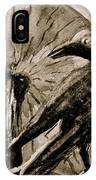 Pumpkin And Crow IPhone Case