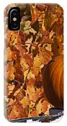 Pumpkin On White Fence Post IPhone Case