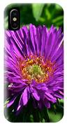 Purple Dome New England Aster IPhone Case