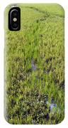 Purple Glasswort (salicornia Ramosissima) IPhone Case