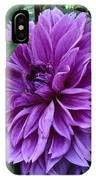 Purple Haze Dahlia IPhone Case