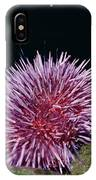 Purple Sea Urchin Feeding California IPhone Case